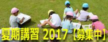 summer2017_2.jpg